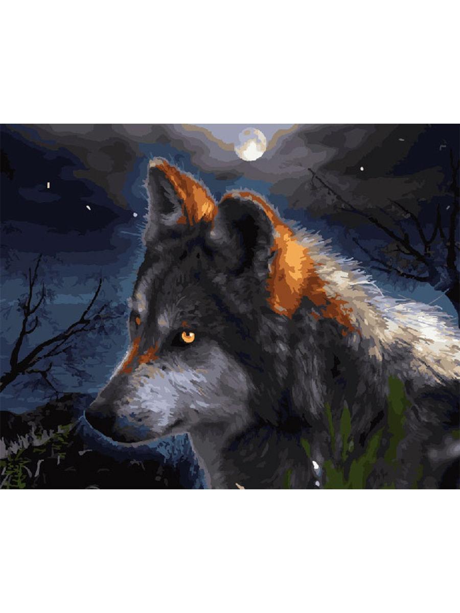 """Живопись по номерам """"Волк"""", 40х50см"""